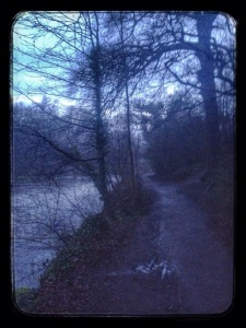 Finding trails in the dark