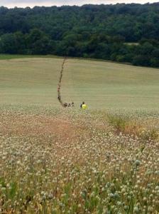 Running through the poppy fields