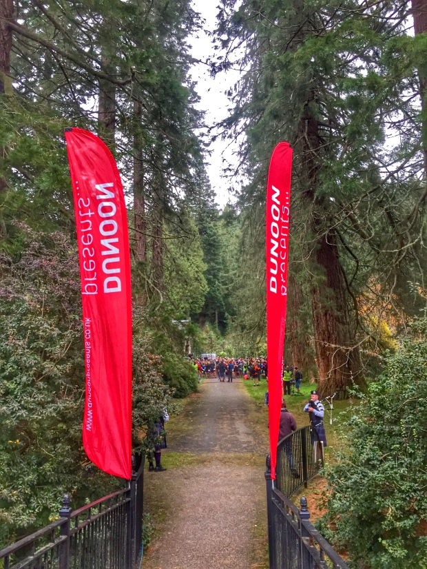 Stunning start line amongst the Redwood trees